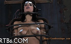 Facial and pussy torture for honey