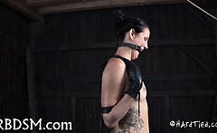 Lovely babe acquires wild torturing