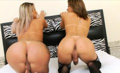 Two glamour shemales fucking each asses on the bed