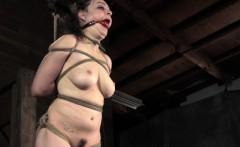 BDSM Dixon Mason whip tortured