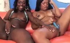Ebony lesbo cuties masturbating with sex toys