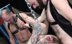 Mature Bears Sharing Tight Ass In A Sex Swing