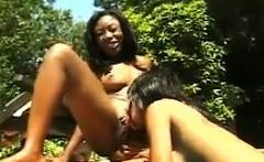 Black Lesbians Outdoors Near The Pool
