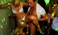 Seductive dancing with captivating honeys and hunks