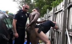 Xxx boys gay sex movie Serial Tagger gets caught in the Act