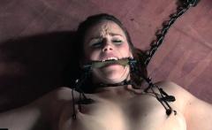 Bound bdsm babe head caged after flogging